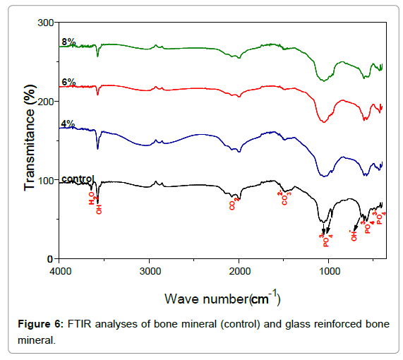 Bioceramics-Development-FTIR-analyses