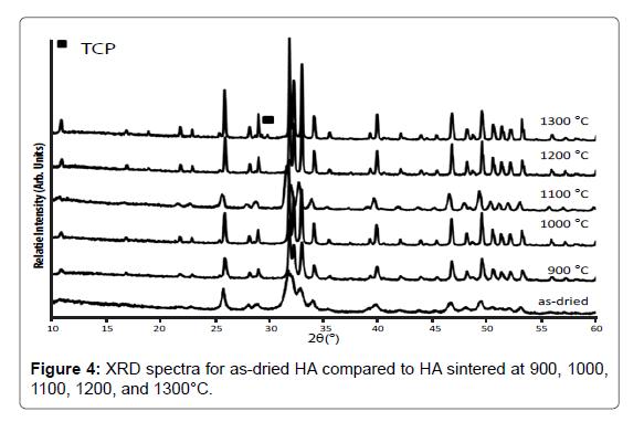 Bioceramics-Development-XRD-spectra