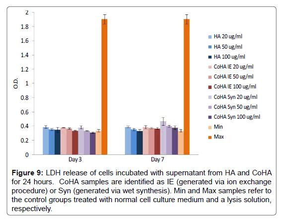 Bioceramics-Development-cells-incubated