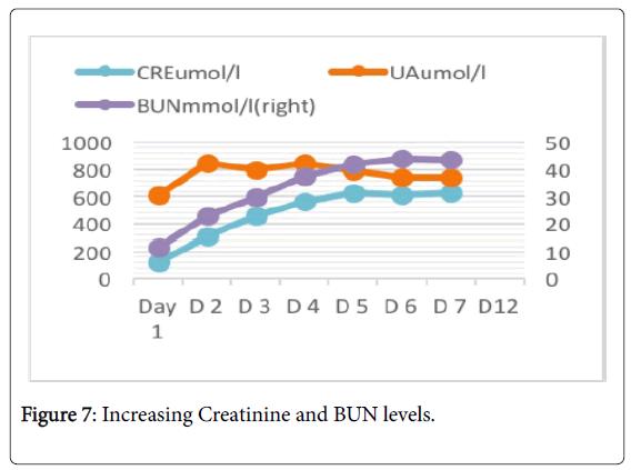Biological-Medical-Sciences-Creatinine-BUN-levels