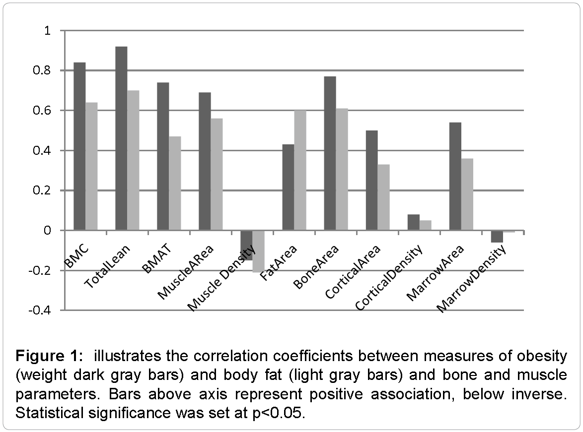 Bone-Marrow-illustrates-correlation-coefficients-between-measures-obesity