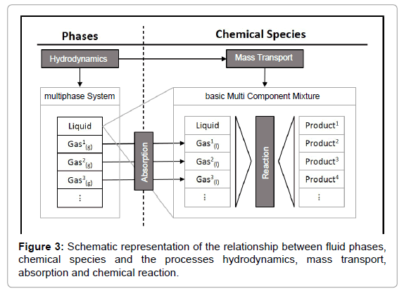 Chemical-Engineering-relationship-between-fluid-phases