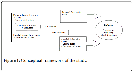 Child-adolescent-behaviour-conceptual-framework