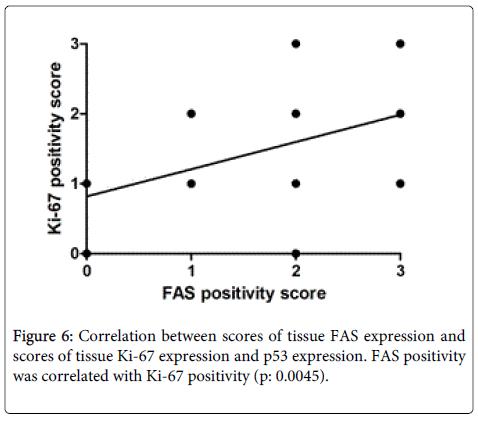 Digestive-System-FAS-positivity
