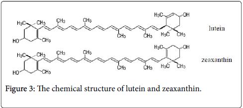 Ecosystem-Ecography-lutein-zeaxanthin