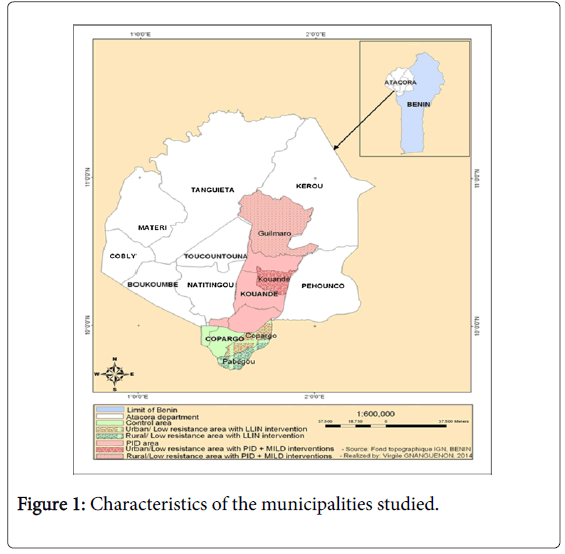 Health-Economics-municipalities