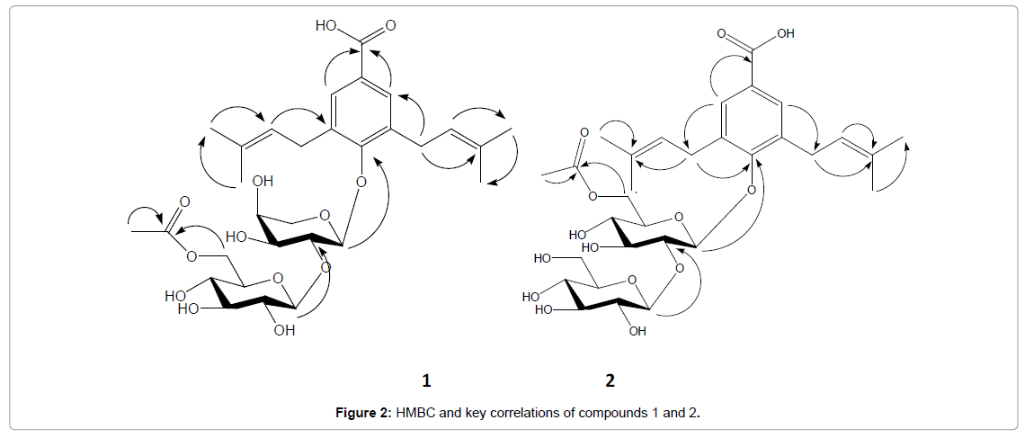 Medicinal-chemistry-HMBC-key-correlations-compounds