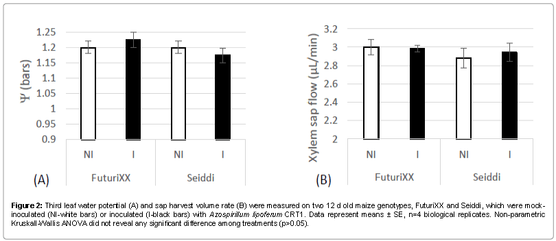 Metabolomics-Third-leaf-water-potential-rate