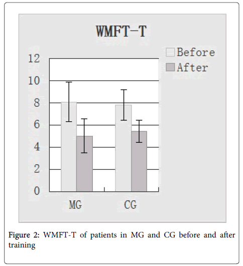 Neurorehabilitation-WMFT-T-patients