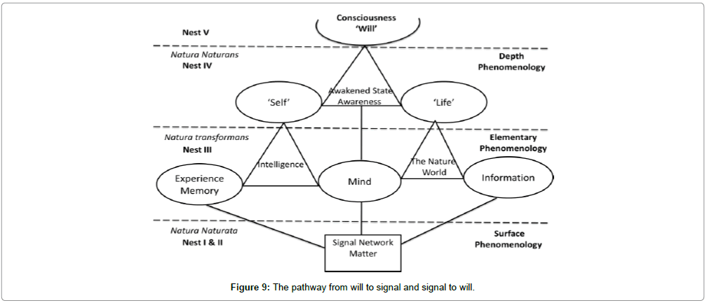 abnormal-behavioural-psychology-The-pathway-will-signal