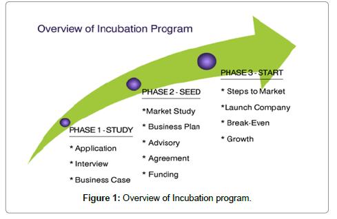 accounting-marketing-program