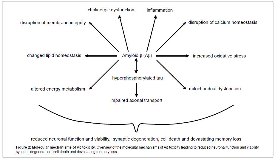 addiction-research-experimental-Molecular-mechanisms