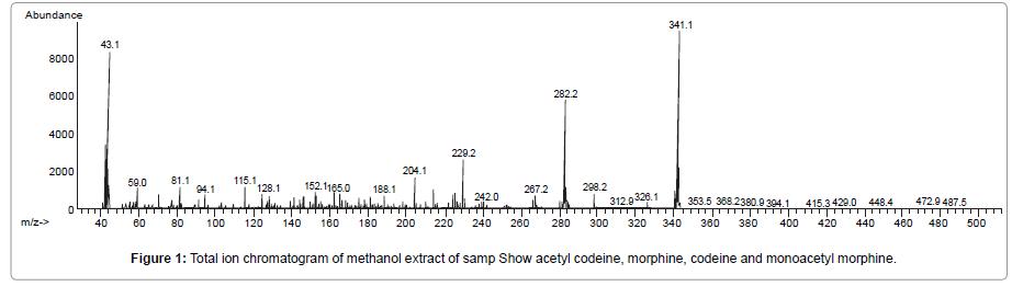 addiction-research-experimental-morphine-codeine