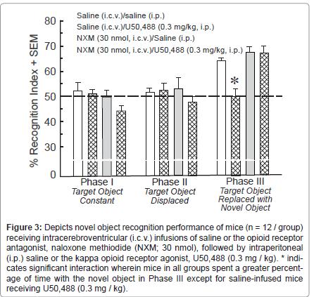 addiction-research-experimental-naloxone-methiodide