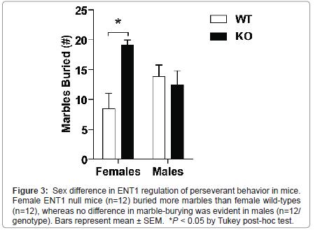 addiction-research-experimental-perseverant-behavior