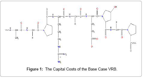 advanced-chemical-engineering-Capital-Costs