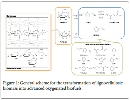 advanced-chemical-engineering-lignocellulosic-biomass