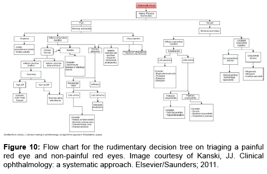 advanced-practices-nursing-Flow-chart-rudimentary-decision-tree