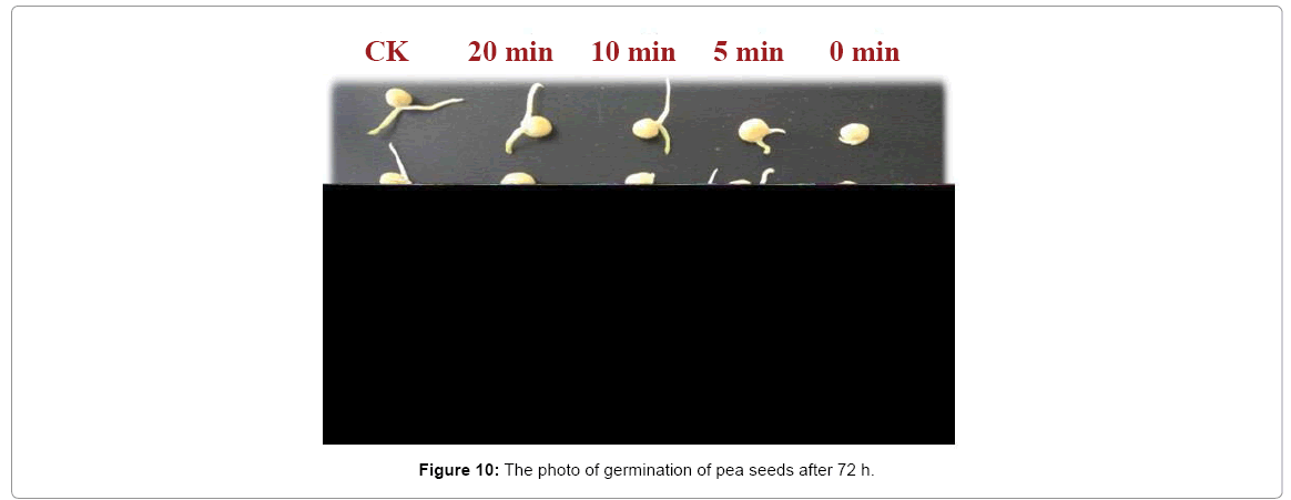advanced-techniqes-biology-germination
