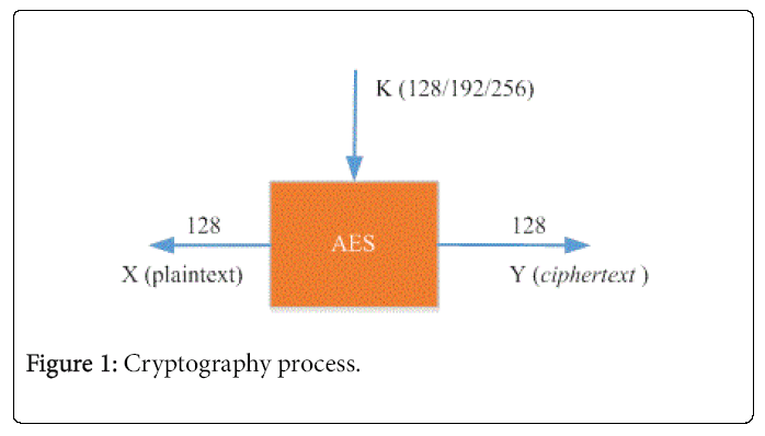 Implementation Of Advanced Encryption Standard Algorithm With Key