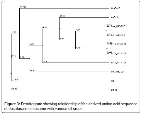advances-crop-science-Dendrogram