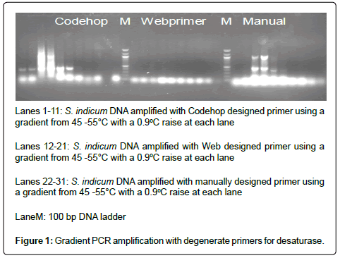 advances-crop-science-Gradient-PCR
