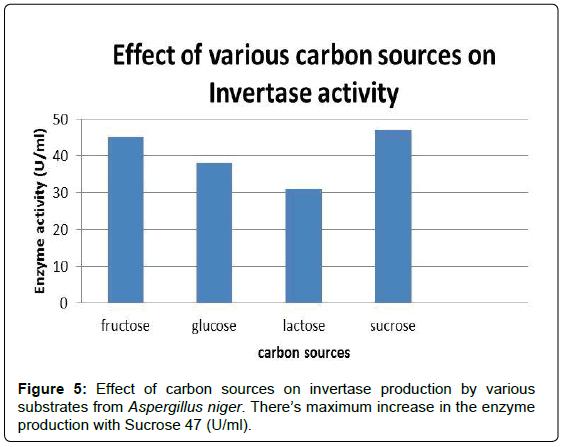 advances-crop-science-carbon-invertase-enzyme