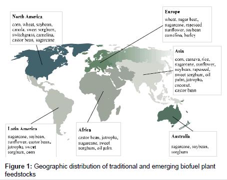 advances-crop-science-technology-emerging-biofuel-plant
