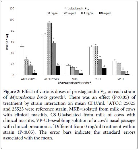 advances-dairy-research-mycoplasma-bovis-growth