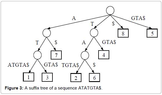 advances-robotics-automation-a-suffix-tree