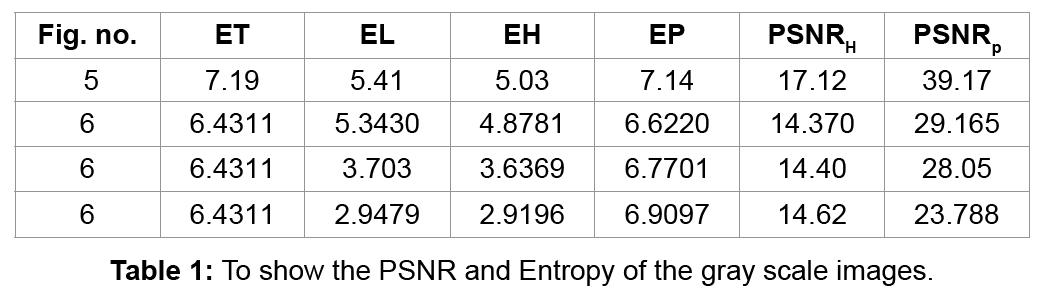 advances-robotics-automation-psnr-and-entropy