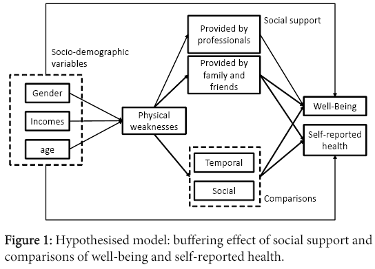 aging-science-Hypothesised-model-buffering