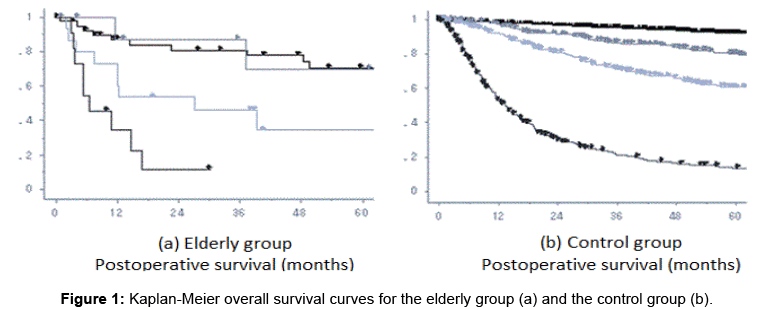 aging-science-Kaplan-Meier-overall-survival-curves