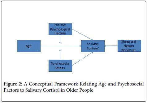aging-science-Psychosocial-Factors