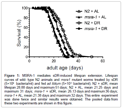 aging-science-sDR-induced-lifespan