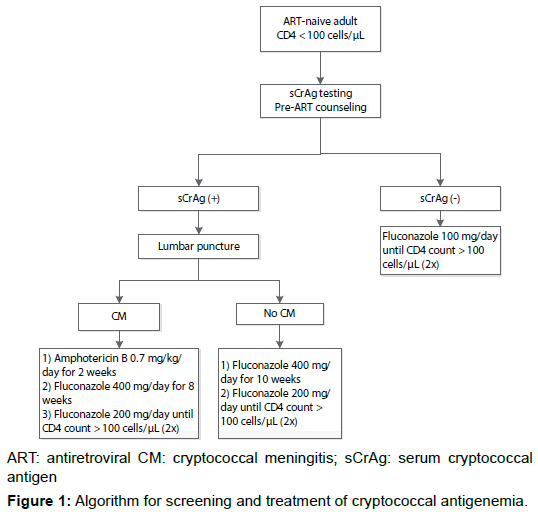aids-clinical-research-algorithm-cryptococcal-antigenemia