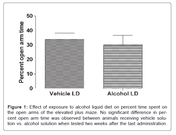 alcoholism-drug-dependence-Effect-exposure-alcohol