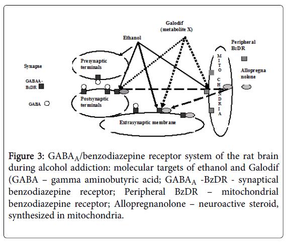 alcoholism-drug-dependence-benzodiazepine-receptor-system