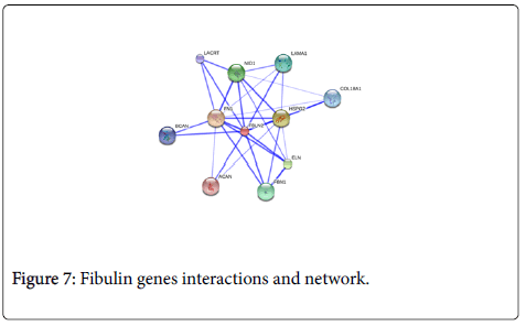 allergy-therapy-Fibulin-genes-interactions