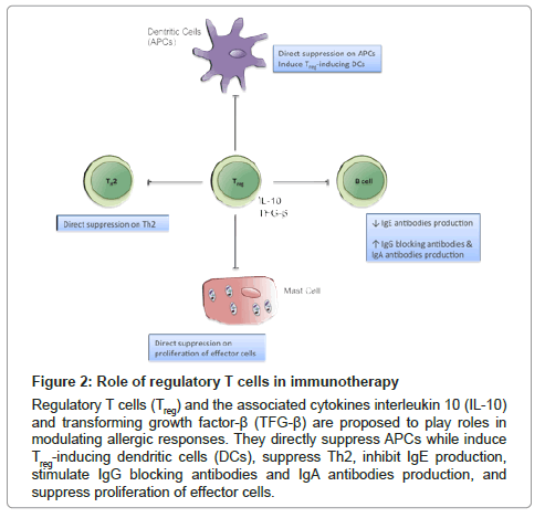 allergy-therapy-Role-regulatory