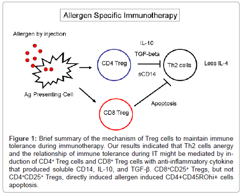 allergy-therapy-surface-cytokine