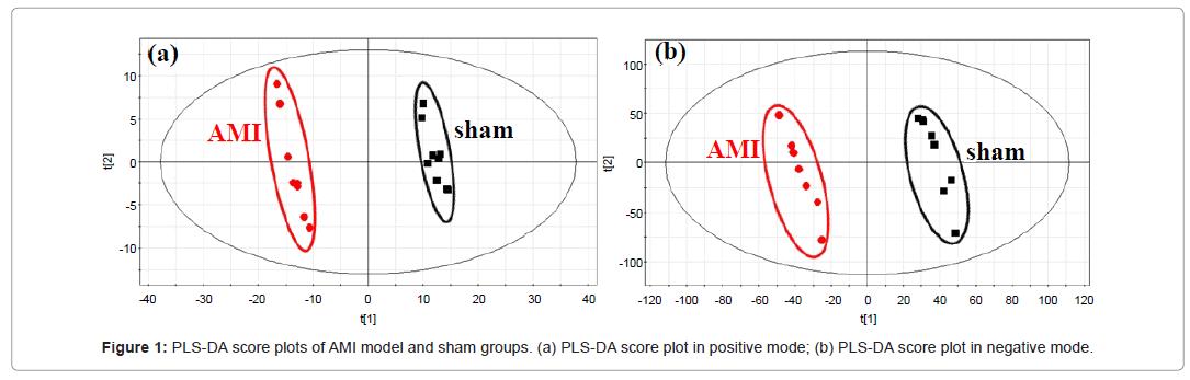 alternative-integrative-AMI-model-sham-groups-2-127-g001