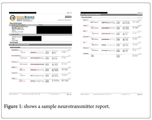 alternative-integrative-neurotransmitter-report