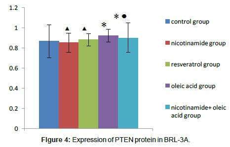 alzheimers-disease-parkinsonism-PTEN-protein