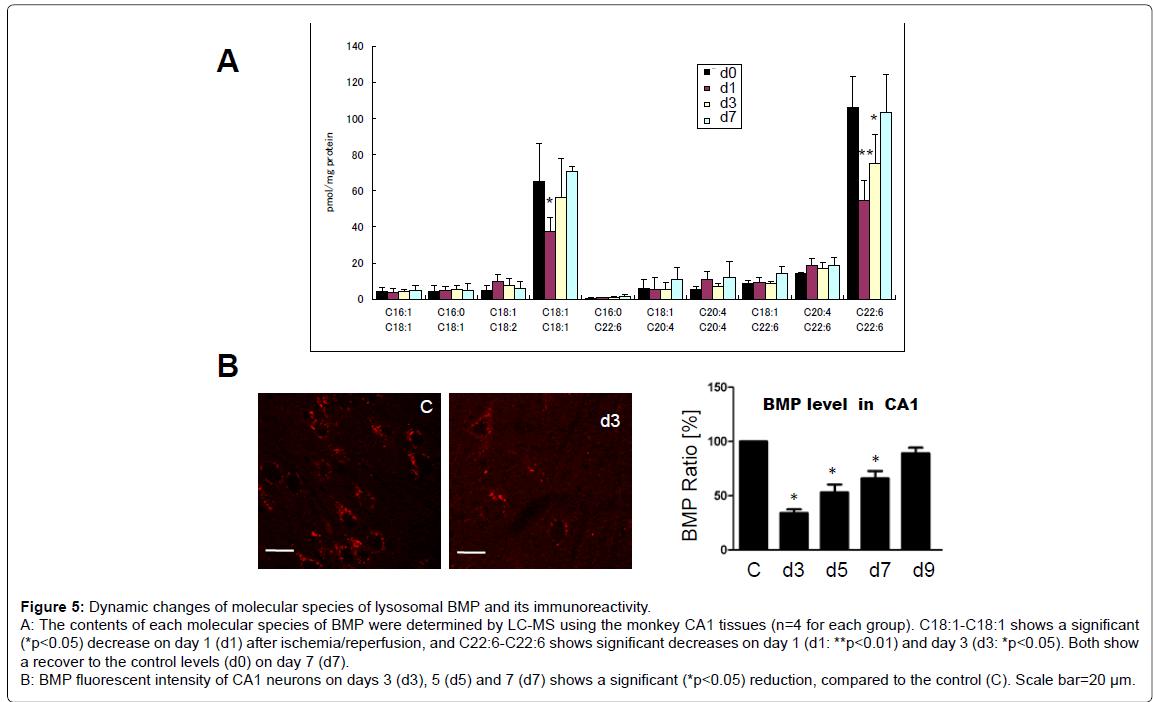 alzheimers-disease-parkinsonism-fluorescent-intensity