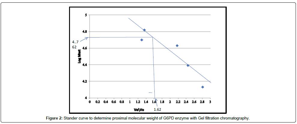 analytical-bioanalytical-Stander-curve