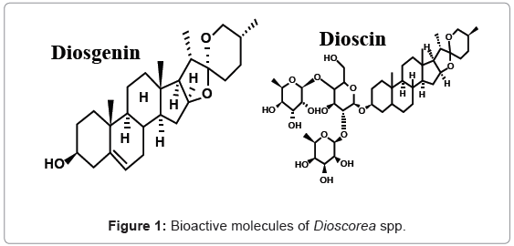 analytical-bioanalytical-techniques-Bioactive-molecules-Dioscorea