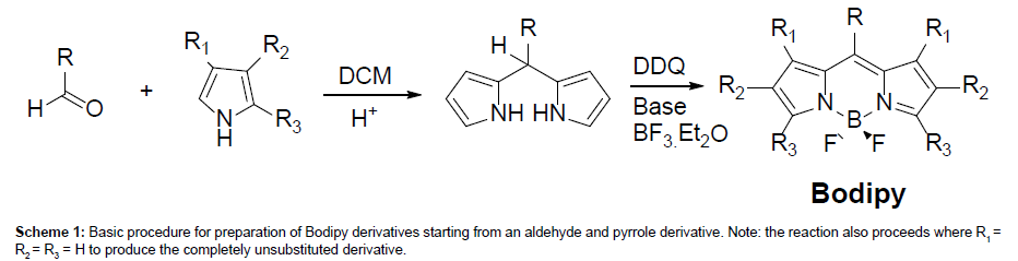 analytical-bioanalytical-techniques-Bodipy-derivatives