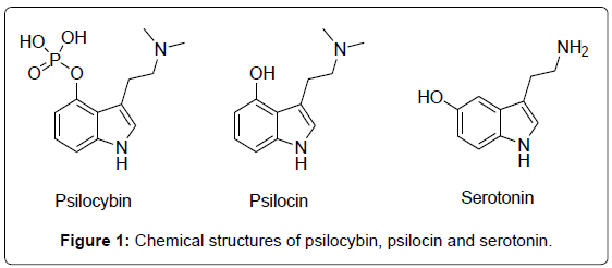 analytical-bioanalytical-techniques-Chemical-psilocybin-serotonin
