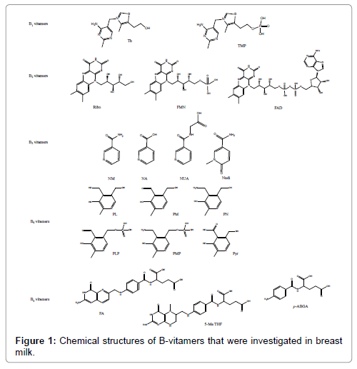 analytical-bioanalytical-techniques-Chemical-structures-B-vitamers